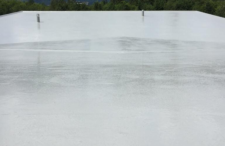 Flexstone Waterproof Coating - Standard Finish Roof Deck